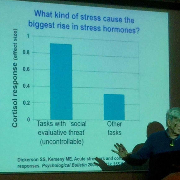 Professor Richard Wilkinson delivering a lecture in front of a power point slide with the title 'what kind of stress causes the biggest rise in stress hormones'